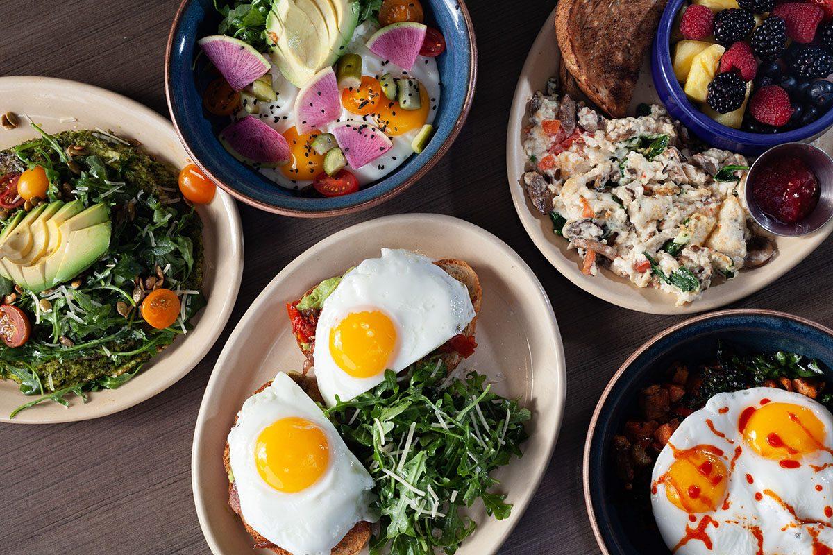 Breakfast & Brunch Food Restaurant – Snooze A.M. Eatery